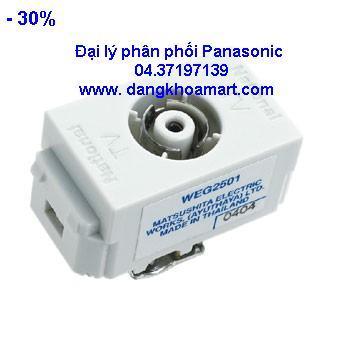 Ổ cắm anten Panasonic WEG2501SW