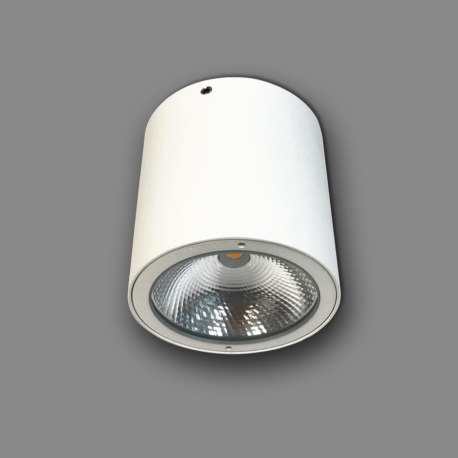 Đèn LED Downlight Trụ Ngoài Trời NSDL2236-73 Ánh Sáng Vàng